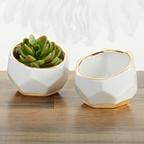 Kate Aspen Geometric Ceramic Planters with Gold Foil Rims (Set of 2)