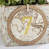 Kate Aspen Travel and Adventure Gold Foil Table Numbers 1 through 18