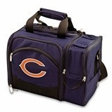 Officially-Licensed NFL Team Logo Malibu Picnic Tote
