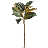 CTW Home Collection Artificial Magnolia Leaf and Bud Stem (Box of 2)