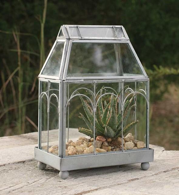 CTW Home Collection Archway Decorative Miniature Glass Terrarium