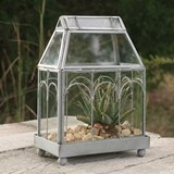 CTW Home Collection Archway Decorative Miniature Glass Terrarium