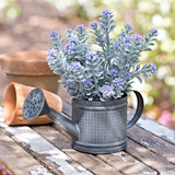 CTW Home Collection Mini Metal Watering Can or Planter (Box of 2)