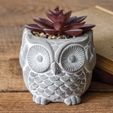 CTW Home Collection Resin Owl Pot with Artificial Succulent