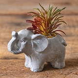 CTW Home Collection Resin Elephant Pot with Artificial Succulent