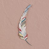 Large 'Feather Whimsy' Paper Feathers (3 Colors) (Set of 12)