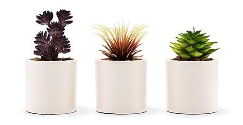 Weddingstar Small Faux Succulent Plants (Set of 6)