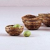 Weddingstar Decorative Miniature Natural Bird Nests (Set of 12)