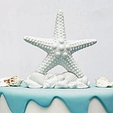 Weddingstar Porcelain Starfish and Seashells Cake Topper