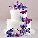 Weddingstar Beautiful Butterfly Cake Ornaments (5 Colors) (Set of 24)