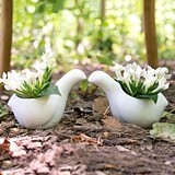 Weddingstar Birds of a Feather Miniature Ceramic Containers (Set of 4)