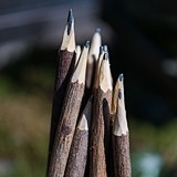 Weddingstar Pre-Sharpened Rustic Branch-Like Wood Pencils (Set of 5)