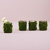 Weddingstar Wicker and Faux Moss Mini Planters with Liner (Set of 4)
