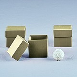 Weddingstar Lustrous Gold Favor Boxes with Lids (Set of 10)