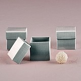 Weddingstar Lustrous Silver Favor Boxes with Lids (Set of 10)