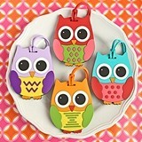 Assorted Wide-Eyed Owl Luggage Tags (4 Colors) (Set of 24)