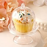 Perfectly Plain Collection Clear Acrylic Domed Cupcake Stand