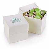 Personalized Ivory Shimmer Two-Piece Cupcake Boxes (Package of 25)