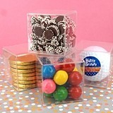Perfectly Plain Collection Clear Plastic Miniature Favor Cube