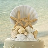 Lillian Rose Coastal Seashell Cake Top
