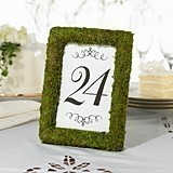 Lillian Rose Faux-Moss Frame Table Number Holder