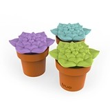 Tipsy Terrarium™ Stopper & Pourer in Assorted Colors by TrueZOO