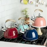 Presley™ Stainless-Steel Tea Kettle by Pinky Up (4 Colors)