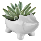 Hedgehog Ceramic Planter by TrueZOO