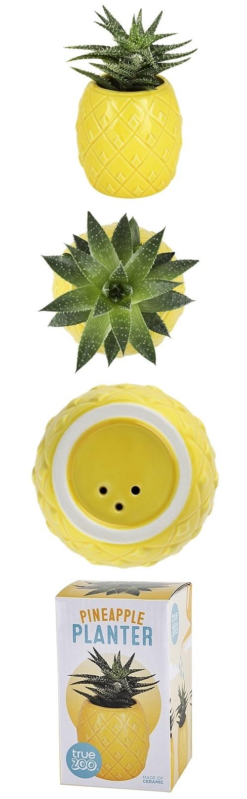 Pineapple Ceramic Planter by TrueZOO